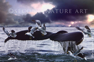 Fluke of Nature by Phatpuppyart-Studios