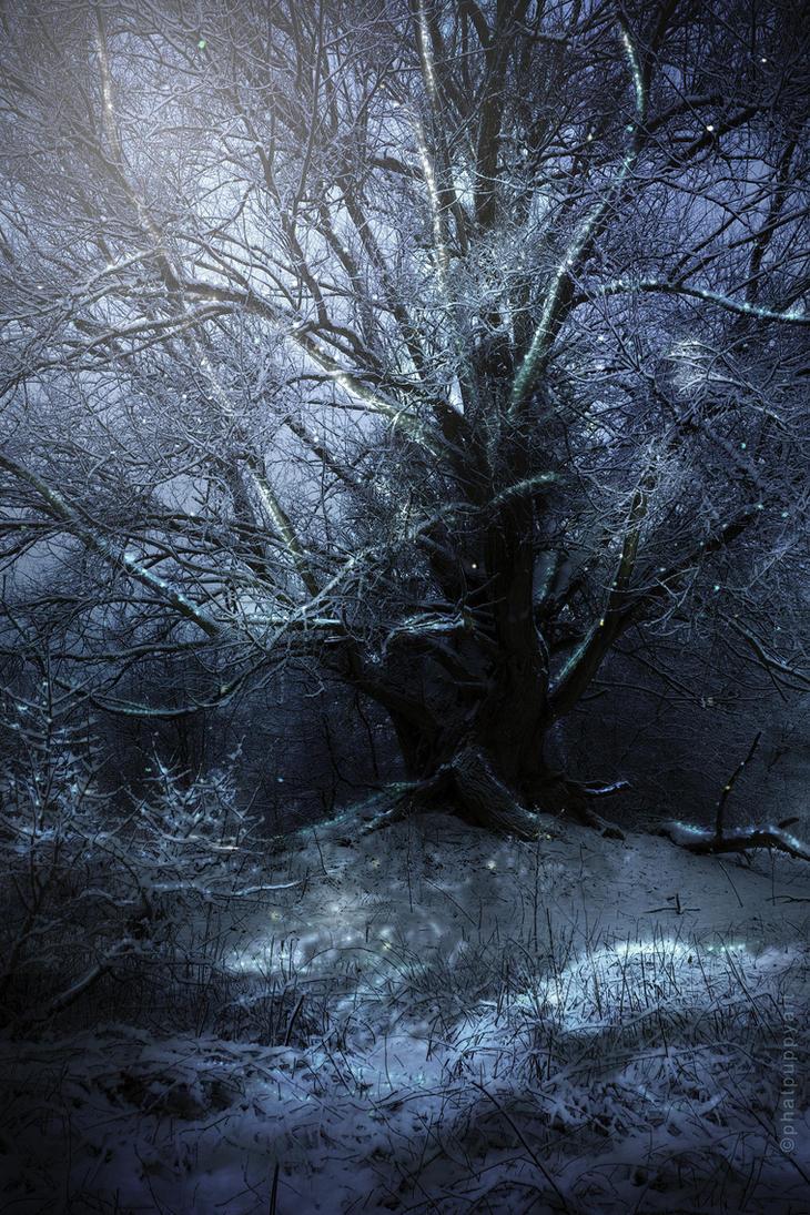 Gethsemane's Christmas by Phatpuppyart-Studios