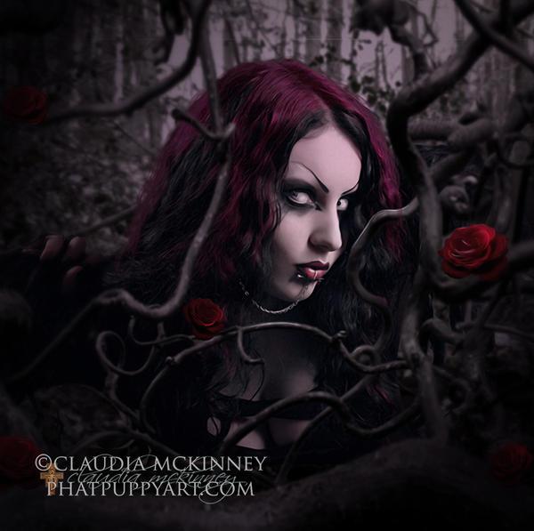 Dark Alice by Phatpuppyart-Studios
