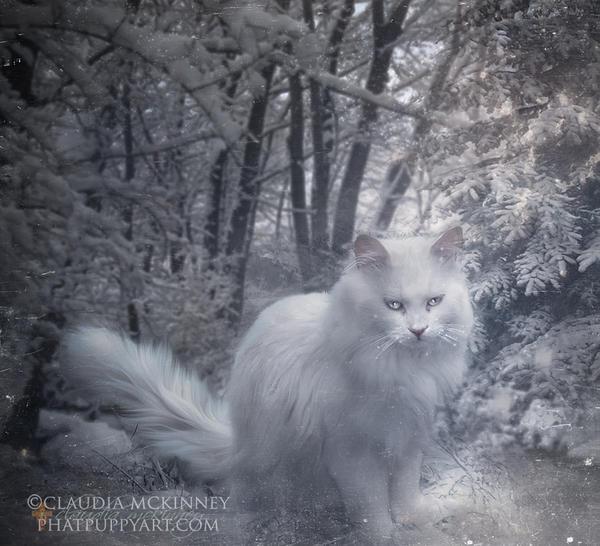 Snowball by Phatpuppyart-Studios