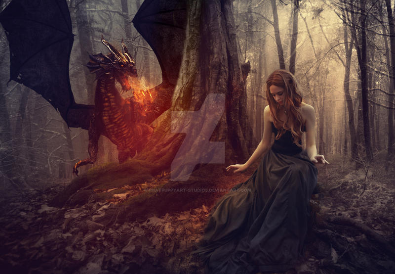 The Dragon Tamer by Phatpuppyart-Studios