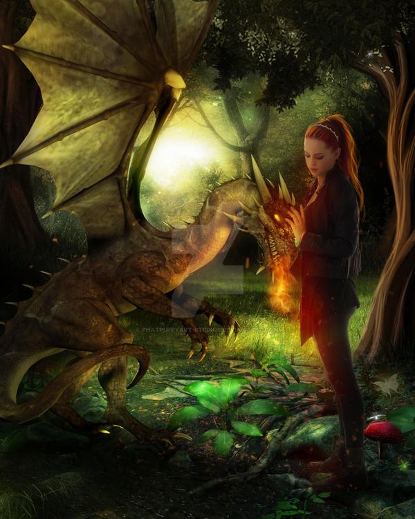 How To Train Your Dragon By Phatpuppyart Studios On Deviantart
