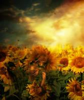 Birth of a Sunflower by Phatpuppyart-Studios