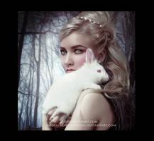 Alice in Winterland by Phatpuppyart-Studios