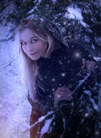 Silent Snowfall by Phatpuppyart-Studios
