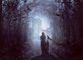 Winter Ravens by Phatpuppyart-Studios