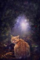 Coco the Cat by Phatpuppyart-Studios