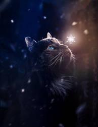 Meowy Christmas by Phatpuppyart-Studios