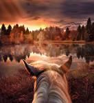 Long Lonesome Ride