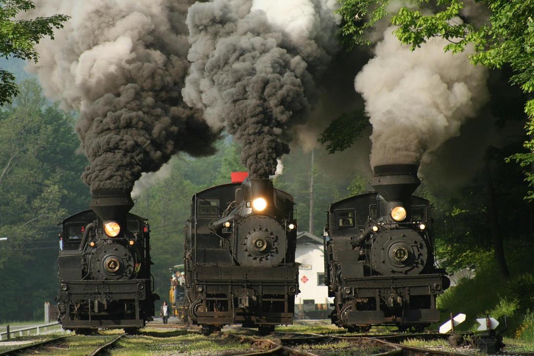 3 Train Race by 3window34