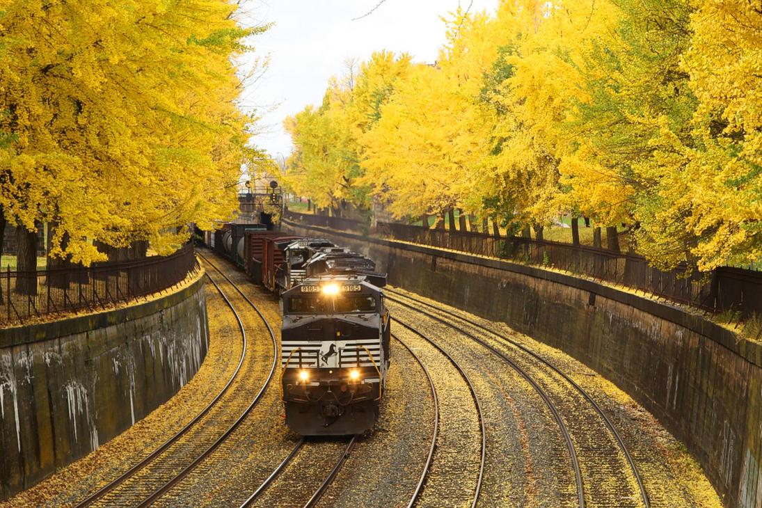 Yellow Brick Road by 3window34