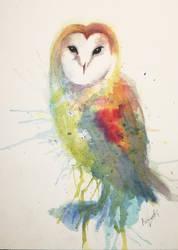 Watercolor Owl Splashes