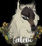 Galem, The Seer
