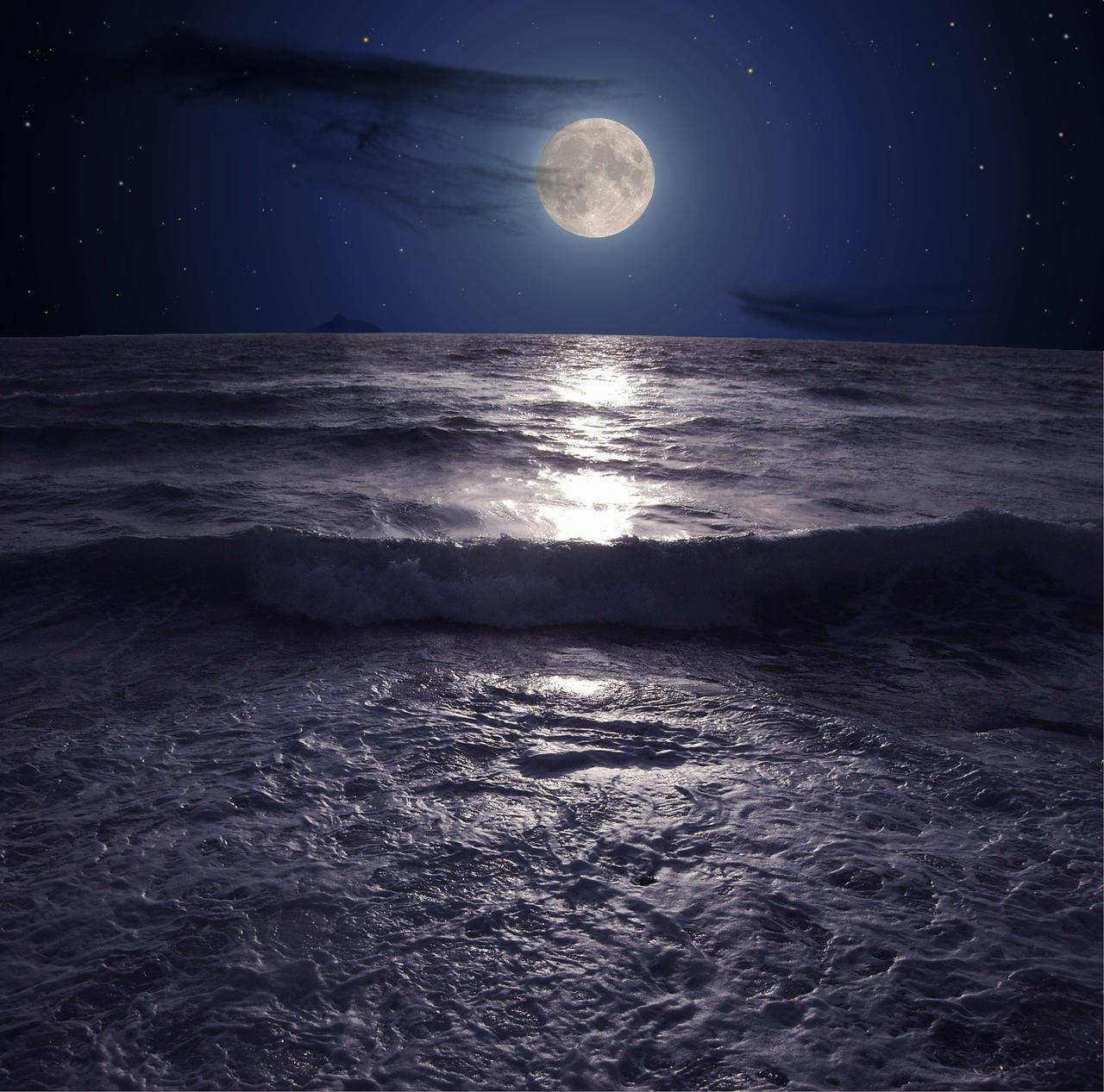 Blue Moon Beach Cafe