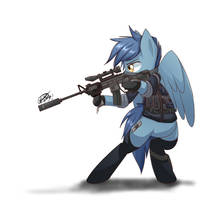 Military Pony