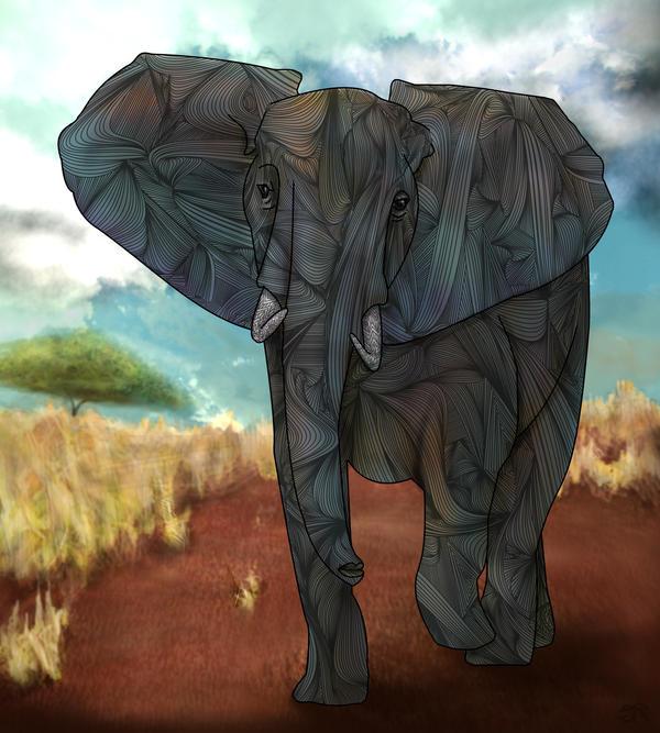 African Elephant by joejoemuh9
