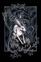 Moon Hare by Lyekka