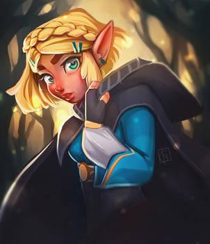 Zelda by ChrissaBug