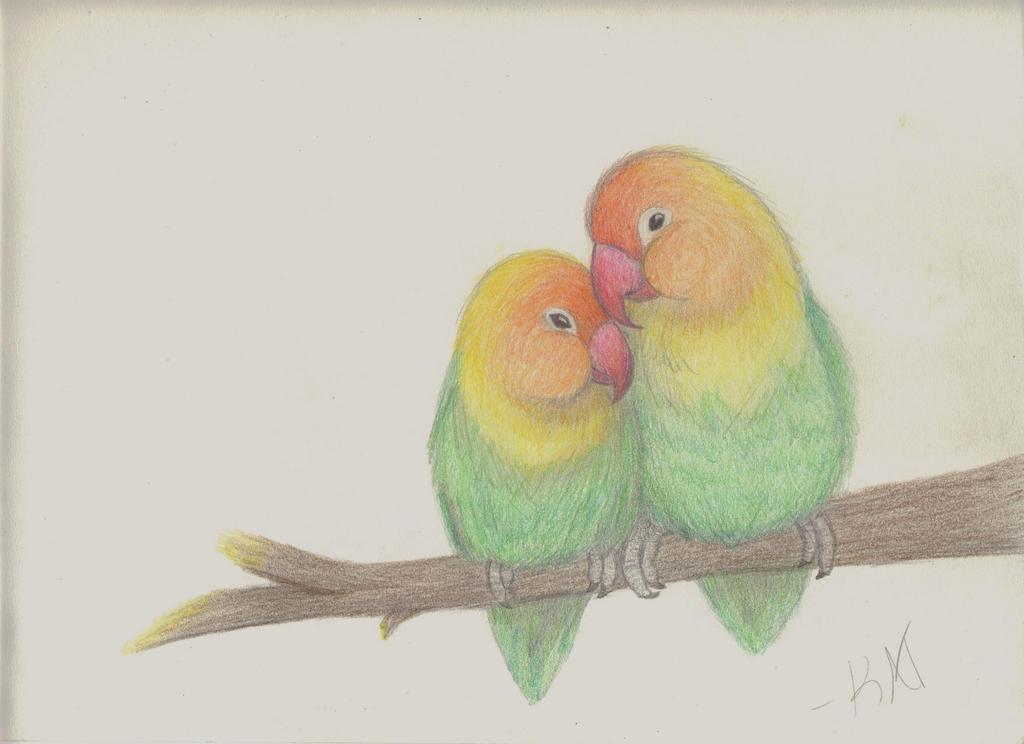 Fun Pencil Drawings Pencil Drawings of Lovebirds