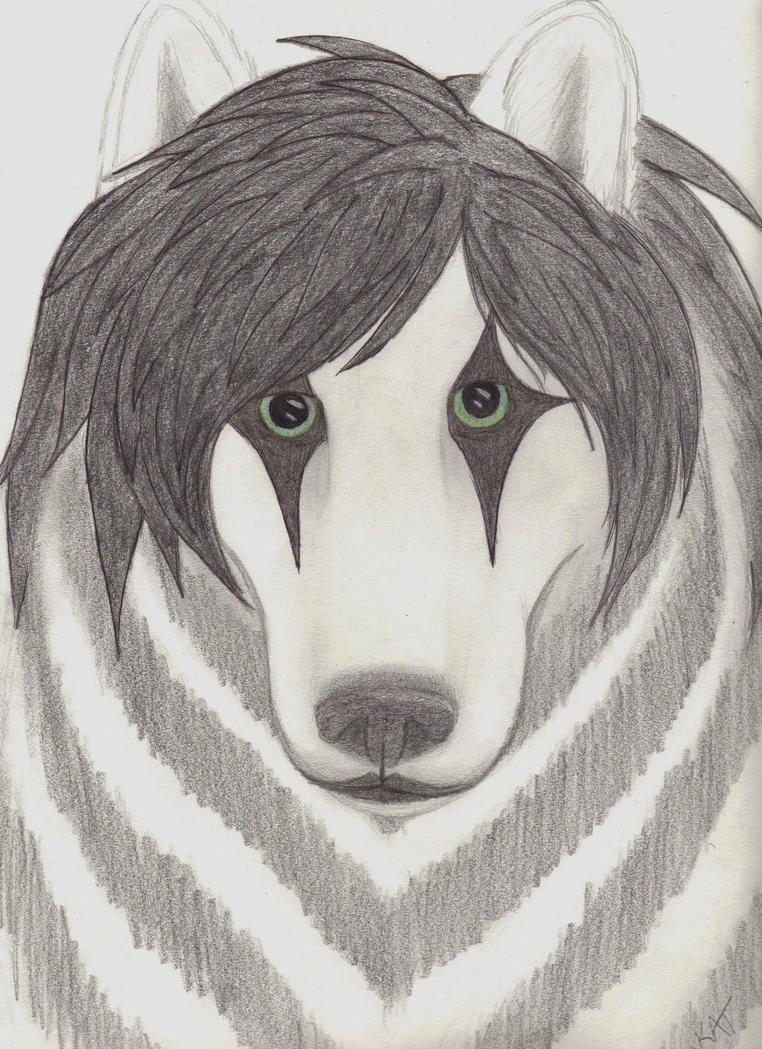 Jinxx as a wolf by wolvenwillow