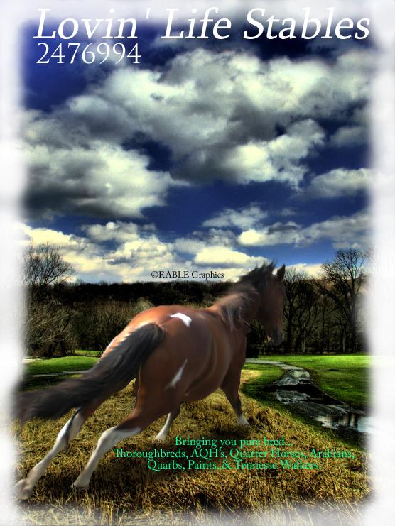 Life Spelled In Cobble : Lovin life stables by cobblestone on deviantart