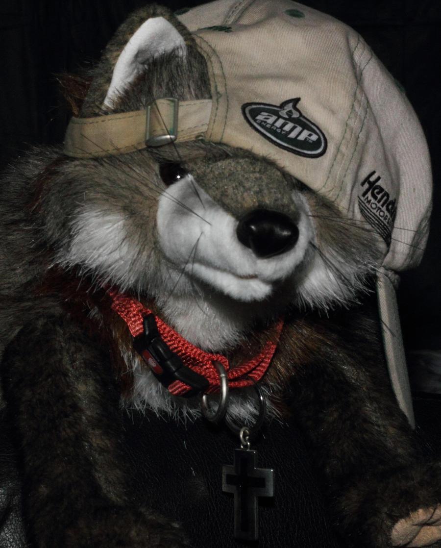JonathanFox's Profile Picture
