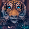Mino Tiger by Eliminate