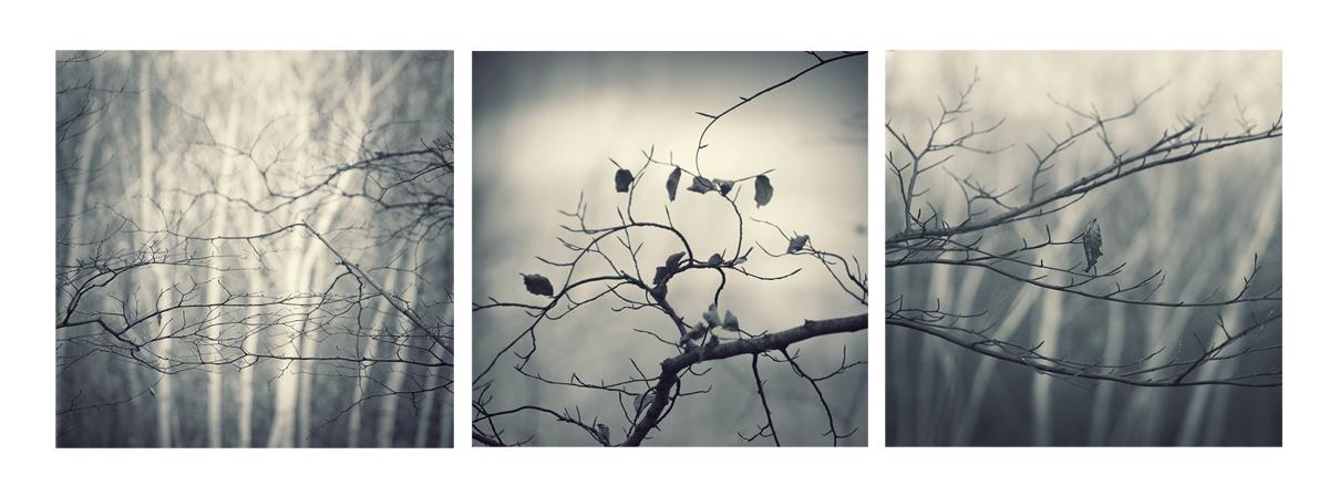triptych by leenik