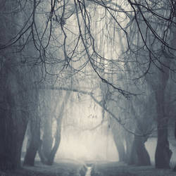 misty presentiment by leenik