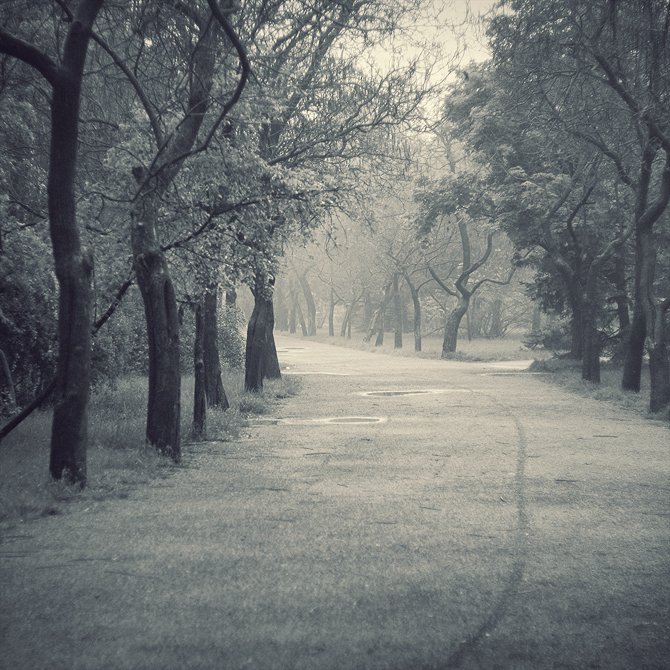 Through the Park by leenik