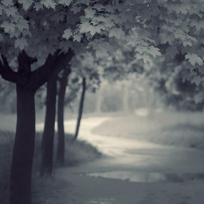 quiet alley by leenik