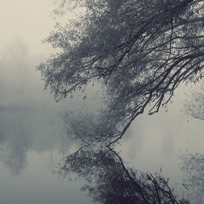 The Fall by leenik