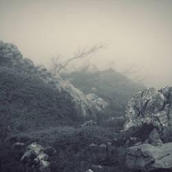 Dead Morning by leenik