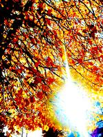 sun 2 by Suadela