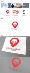 Carpe Diem travel brand concept by f3nta