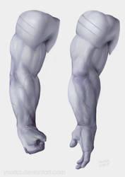 Lysaia Arm Study - Pronation