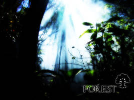 Magic The Gathering Forest by wallofstars