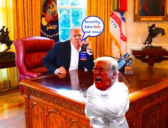 DonaldTrump Lost in Insanity