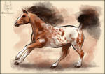 Animal Totem: Horse