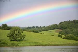 Rainbow by Piasecka