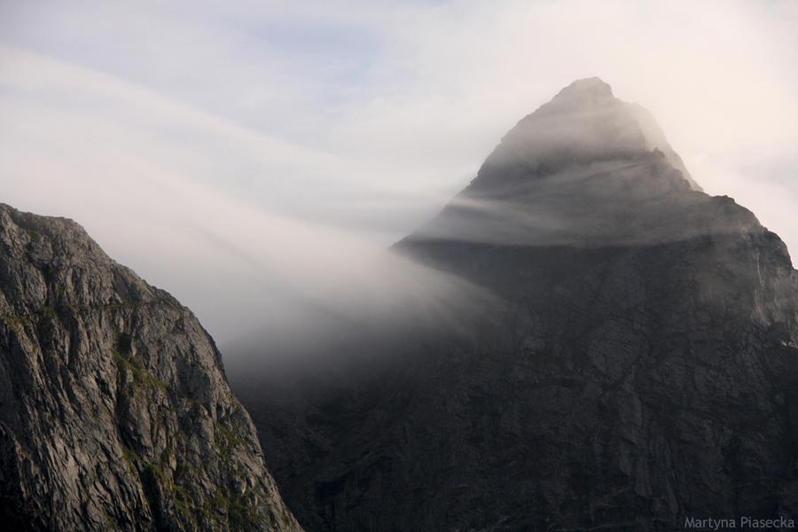 Misty by Piasecka