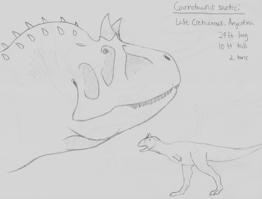 Species Spectrum Challenge Week 6: Carnotaurus v2 by guilmon182