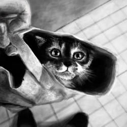 Day58 Cat in Bag by Foxeus