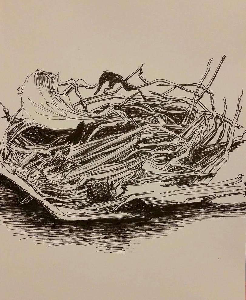 A Nest. by HelenQuarter