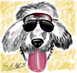 Sai Head Doodle No. 1: Jesse