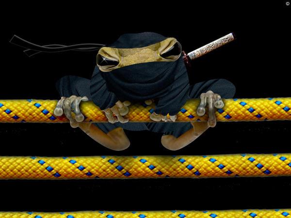 The Team  Ninja_frog_by_brto22