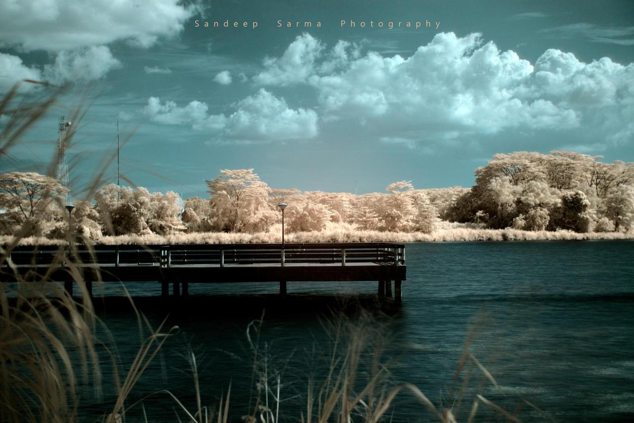 daydreams by sandeepsarma