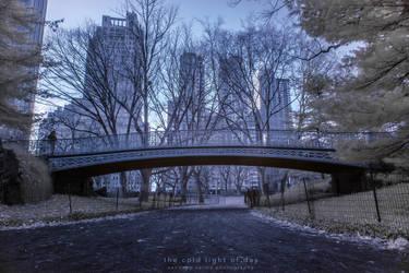 the cold light of day by sandeepsarma
