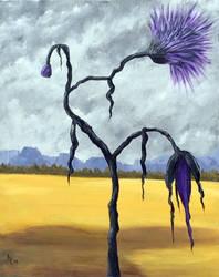 Black Flower Re-visited
