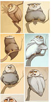 Owltober pt. 1